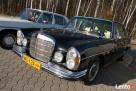 Zabytkowy Mercedes do ślubu - 4