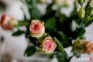 Flowers-Dekoracje Florystyka - 8