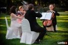 Kwartet smyczkowy Con Forza-oprawa muzyczna uroczystości - 6