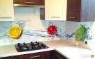 Panele szklane kuchenne hartowane z grafiką producent - 6