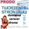 Tworzenie stron wordpress responsywnych 298 zł. ! w Poznaniu Poznań