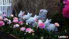 Dekoracja ozdoba do ogrodu-Figurka ogrodowa zajączek - 2