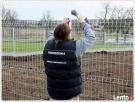 Montaż Ogrodzeń,Automatyki do Bram Siatka Panel Ogrodzeniowy Szczebrzeszyn