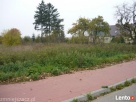 Gniewino, ul. Spokojna - Działka siedliskowa · 3000 m² Gniewino
