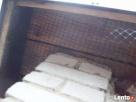 Montaż kolców - antyptaków -zabezpieczenia przeciw ptakom Słupsk