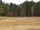 Działka budowlano-leśna z warunkami zabudowy