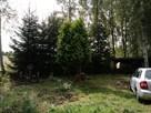 Działka rekreacyjna nad jeziorem, Brzeźno, koło Szczecinka - 8
