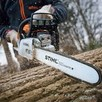 Usługi pilarza! Wycinanie oraz przycinanie drzew i krzewów.
