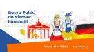 OnlineBus.pl CODZIENNIE! TANIO! KOMFORTOWO! od 50€ - 4