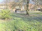 Mała kawalerka w parku, scisłe centrum na Szczec, Swinoujscie