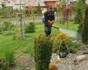 Usługi ogrodnicze karczowanie działek opryski przeciw komarą - 3