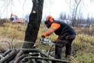 Wycinka koszenie ukladanie kostki montaż ogrodzeń - 3