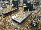 Sprzątanie grobów - 3