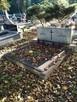 Sprzątanie grobów - 1