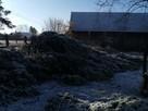 Jarosław przycinka przycinanie drzew Firma Trawka - 2