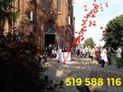 Płock balony z helem płock hel do balonów brama z balonów