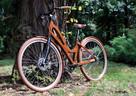 Rowery drewniane - Customy, przeróbki, naprawy. - 2