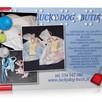 Obroż, szelki, smycz, legowisko, ubranko LUCKY DOG - BUTIK - 2