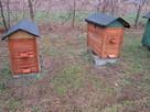 pszczoly ule odklady - 2