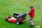 Regeneracja trawników. Usługi ogrodnicze. Trawniki z rolki. - 3