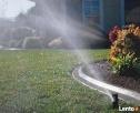 Regeneracja trawników. Usługi ogrodnicze. Trawniki z rolki. - 5