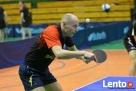 Tenis stołowy ping pong Wrocław