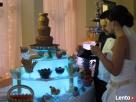wynajem fontann czekoladowych i alkoholowych Dębica
