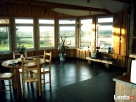 BAMBUSERIA Kampinos- agroturystyka,domek letniskowy,sauna - 3