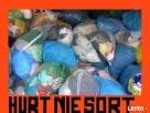 _________ - HURT NIESORT - _________ Szczecin