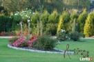 Artmon Ogrody Projektowanie, zakładanie, nawadnianie ogrodów - 3