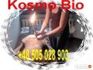 Kursy Reiki Biomasaż świecowanie masażu terapie naturalne