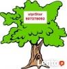 Wycinka Drzew Myszków/Zawiercie Zwyżki t:507278093 alpiStar Myszków