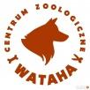 Strzyżenie psów/kotów DOBCZYCE Centrum Zoologiczne Wataha