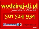 Wodzirej-Dj Jarosław Skrabek z akordeonem i biesiadą przy st