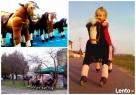 PonyCycle Konie mechaniczne atrakcje dmuchańce Wynajem Kutno