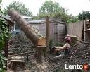 Wycinka drzew,usługi rębakiem i koszenie kosiarką bijakową - 2