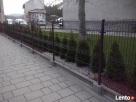 Przęsło ogrodzeniowe nowoczesny wzór D-06 blacha - 5