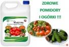 Fungilitic Całkowita Odporność Roślin Na Choroby Grzybowe Szczecin