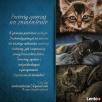 Portrety zwierząt na zamówienie - kotów, psów, koni Gryfów Śląski