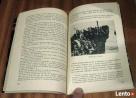 Bitwa pod Lagarde. Zygmunt Kosior - 5