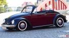 Auto do ślubu Volkswagen Garbus Cabrio do wynajęcia Ostrów - 6