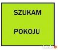 Szukam pokoju Poznań