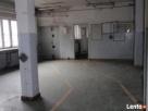 Budynek mieszkalno-usłgowy - 7