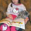 Rodowodowe kocięta EGZOTYCZNE i perskie - 1