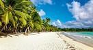 Dominikana - Karaibska Ślicznotka - Geotour
