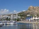 Pokój Jednoosobowy w Alicante-Hiszpania, Zima pod Palmą !!!