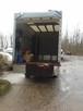Tanie usługi transportowe 667-903-199 - 6