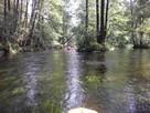 Spływy kajakowe - 8
