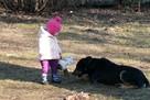 Kocha dzieci i aportowanie - Pharell do adopcji! - 2