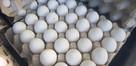 Jajka wiejskie białe